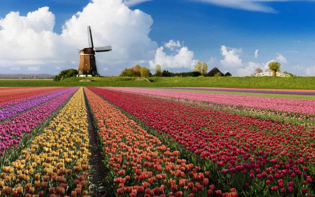 Sự khác biệt giữa Holland và Netherlands.